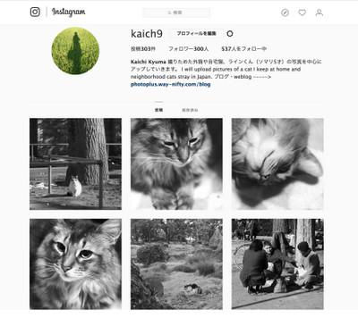 180209_instagram